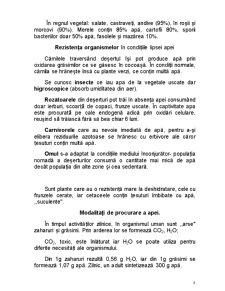 Amenajări - Pagina 4