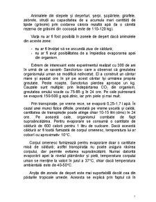 Amenajări - Pagina 5
