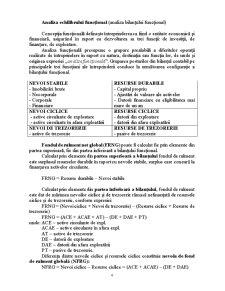Gestiunea Financiara a Intreprinderilor - Pagina 4