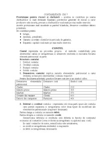 Contabilitate - Curs 7 - Pagina 1