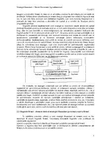 Strategii Financiare - Master Economie Agrară Europeană - Pagina 3
