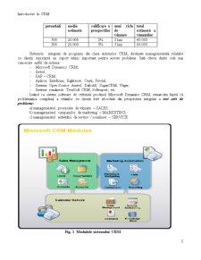 CRM - Custom Relationship Management o Solutie de Management al unei Firme de Audit - Pagina 2