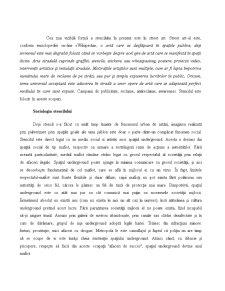 Strategii Creative în Publicitate - Stencilmania - Pagina 5