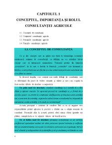 Consultanță Managerială - Pagina 4