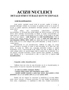 Acizii Nucleici - Detalii Structurale si Functionale - Pagina 1
