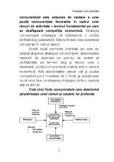 Strategii Concurențiale - Pagina 5