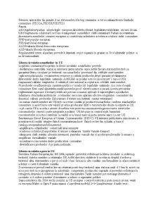 Uniunea Europeana - Pagina 3