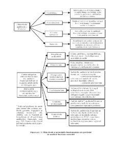 Scheme Audit Financiar - Pagina 3