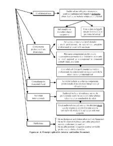 Scheme Audit Financiar - Pagina 5