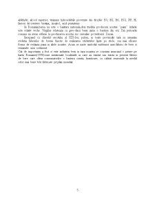 Tehnologie de Fabricare a Berii Blonde - Pagina 5