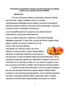 Proiectarea Ansamblului Design de Produs - Design de Ambalaj pentru Sucul Natural de Fructe Prigat - Pagina 2
