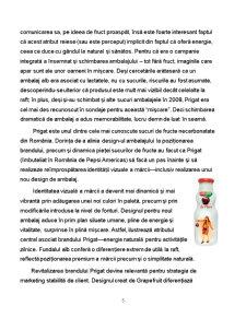 Proiectarea Ansamblului Design de Produs - Design de Ambalaj pentru Sucul Natural de Fructe Prigat - Pagina 5