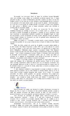 Curs Macroeconomie - Pagina 4
