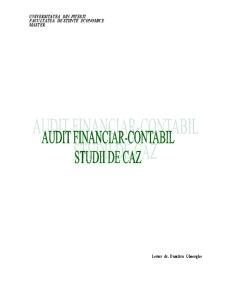 Audit Financiar-Contabil - Studii de Caz - Pagina 1