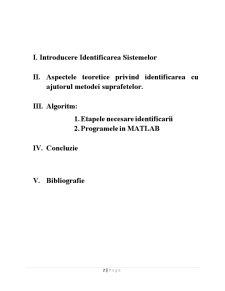 Identificarea Sistemelor prin Metoda Suprafetelor - Pagina 2