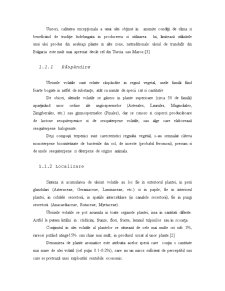 Uleiurile Volatile - Generalitati - Pagina 3