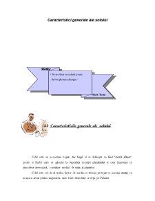 Uleiuri Volatile - Pagina 1
