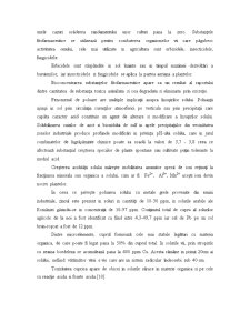 Uleiuri Volatile - Pagina 4