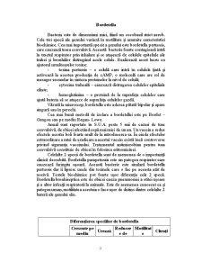 Bordetella - Pagina 1