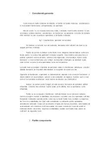 Instalatia de Aprindere - Pagina 2