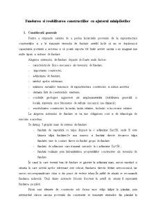 Fundatii pe Minipiloti cu Studiu de Caz - Pagina 2