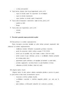 Fundatii pe Minipiloti cu Studiu de Caz - Pagina 5