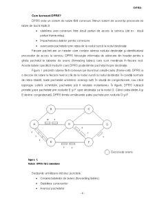 Sistemul Dinamic de Rutare a Pachetelor - Pagina 4