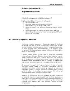 Finanțarea imm-urilor - Pagina 5