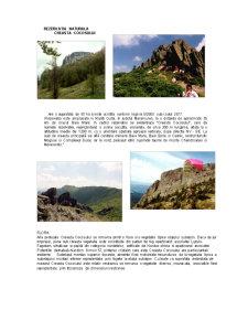 Rezervatii Naturale - Pagina 4