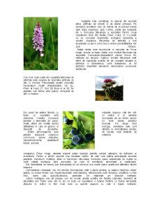 Rezervatii Naturale - Pagina 5