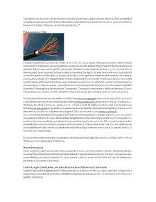 Cursuri Informatica - Pagina 2