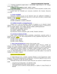 Analiză și Diagnostic Financiar - Pagina 4