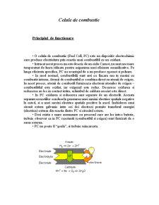Celule de Combustie - Pagina 1
