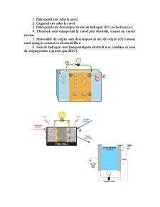 Celule de Combustie - Pagina 2