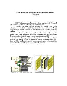 Celule de Combustie - Pagina 5
