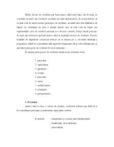 Mecanisme și Tehnici de Acordare a Creditelor - Pagina 2