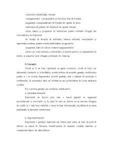 Mecanisme și Tehnici de Acordare a Creditelor - Pagina 4