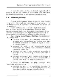 Economia Firmei Curs 6 - Pagina 5