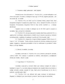 Practica SC Talida SRL - Pagina 3