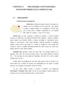Proiect Practica - Institutia Prefectului Judetului Iasi - Pagina 2