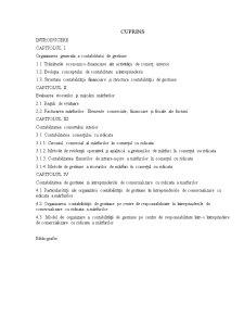 Contabilitatea de Gestiune - Pagina 4