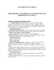 Organizarea Contabilitatii in Institutiile de Administratie Publica - Pagina 1