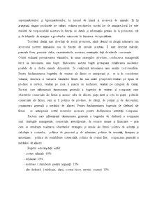 Analiza Economico-Financiara - Firma Alfa - Pagina 3