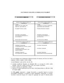 Indicatorii Bilanțului Contabil - Pagina 5