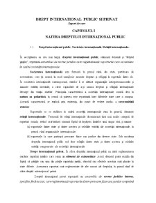 Drept International Public si Privat - Pagina 1
