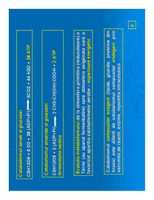 Biochimie Metabolica - Pagina 4
