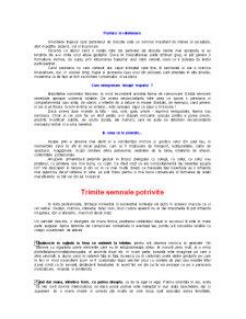 Mini Curs de Comunicare - Pagina 2