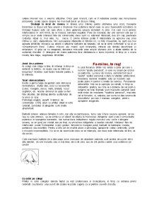 Mini Curs de Comunicare - Pagina 4