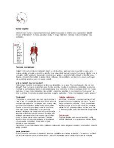 Mini Curs de Comunicare - Pagina 5