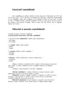 Bazele Contabilitatii - Pagina 2